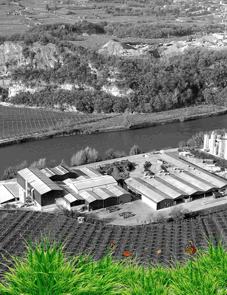 Bonifica amianto e Cisterne a Trento
